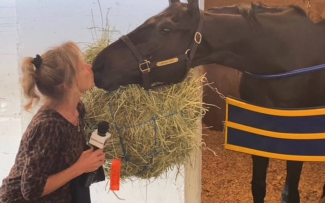 Meet the breeder who sold the Kentucky Derby winner for $1,000. And is thrilled